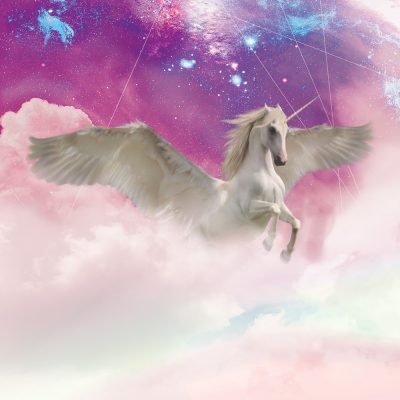 Unicorn Dream - Metallic Print by Acacia Carr