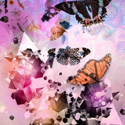 """Fractured (Butterflies)"" Graphic Art Print by Acacia Carr, Copyright 2020, All rights reserved."