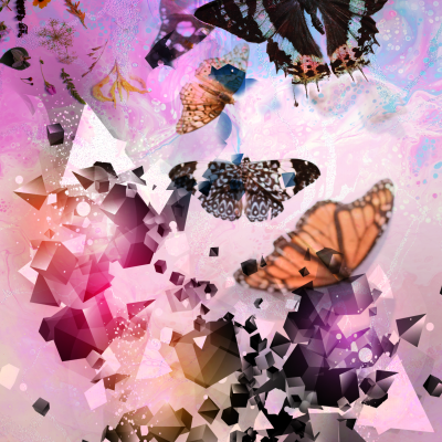 """""""Fractured (Butterflies)"""" Graphic Art Print by Acacia Carr, Copyright 2020, All rights reserved."""