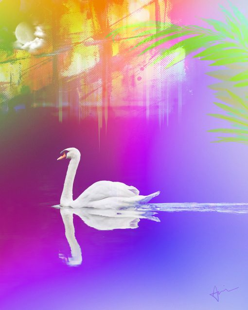 """Swan Song"" Graphic Art Poster by Acacia Carr, 2020. All rights reserved."